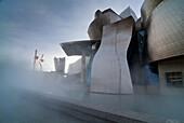 Museo Guggenheim  Bilbao  Vizcaya  Pais Vasco