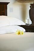 Hibiscus on bed, Bedroom, Cousine Island Ressort, Seychelles
