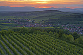 View over vineyards at Oberrotweil and Burkheim, Vosges, Spring, Kaiserstuhl, Baden-Württemberg, Germany, Europe