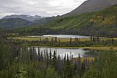 Autumn scenery, Twin Lakes, Yukon Territory, Canada