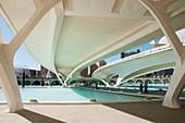 Monteolivet bridge, City of Arts and Sciences. Valencia, Comunidad Valenciana, Spain.