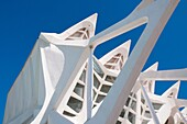 Príncipe Felipe Science Museum, close view. City of Arts and Sciences, Valencia, Comunidad Valenciana, Spain.