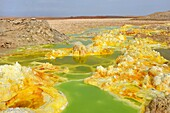 Ethiopia, Afar region, Danakil depression, Dallol, Sulfuric acid pond  Dallol is a volcanic explosion crater which was formed during a phreatic eruption in 1926, This crater and other similar ones nearby are the lowest known subaerial volcanic vents in th
