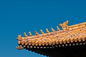 Roof detail at the Forbidden City in Beijing China