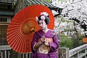 geisha with red parasol in Gion area,Geisha dans le quartier de Gion à Kyoto, Japon