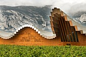 Ysios winery building  Alava  Basque country  Spain