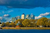 Island Gardens with buildings of Canary Wharf in background Isle of Dogs east London England UK Europe