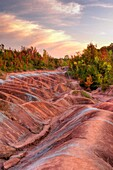 Gorgeous Martian like landscape formed from red and gray eroded clay  Cheltenham Badlands Ontario Canada HDR image