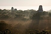 Sunrise and early morning mist at Tikal Archaeology Site