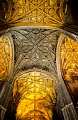 Cathedral, detail of the central vault  Seville, Andalusia, Spain