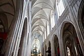 Onze Lieve Vrouwekathedraal - Cathedral of Our Lady, Antwerp, Belgium, Europe