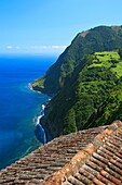 Coastal landscape in Nordeste  Sao Miguel island, Azores, Portugal