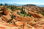 Hills and hoodoos along a hiking trail in Bryce Canyon National Park, Utah