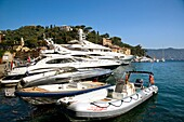 Luxury Yachts moored at Portofino, Liguria, Italy