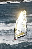 sun glints off a gold and black windsurf sail in the sea off El Medano beach Tenerife Canary Islands Spain