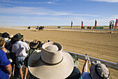 Horse racing in the outback at the annual Birdsville Cup Races  Every September the small town holds the most famous bush racing carnival in Australia  Birdsville, Queensland, Australia