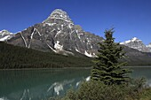 Canada, Alberta, Banff National Park, Mount Chephren, Waterfowl Lake