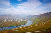 Moselle loop near Trittenheim, Rhineland-Palatinate, Germany