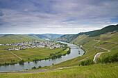 Mosel mit Trittenheim, Weinanbaugebiet, Rheinland-Pfalz, Deutschland, Europa