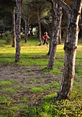 exercise, Female, fit, footing, human, outdoor, running, sport, woman, A75-1139414, AGEFOTOSTOCK