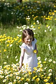 brown hair, Caucasian ethnicity, chestnut hair, child, childhood, Color image, contemporary, country, day, delicate, dress, Female, flower, girl, grass, grassland, happiness, happy, holding, human, infancy, innocence, innocent, joy, kid, leisure, meadow,