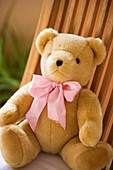 bow, bowknot, chair, childhood, Close-up, Color image, concept, contemporary, day, infancy, innocence, innocent, knot, object, one, One item, outdoor, pink, Single item, soft, still life, teddy-bear, thing, toy, vertical, D37-1135924, AGEFOTOSTOCK