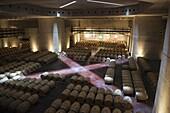 Argentina, Mendoza Province, San Carlos, Bodega O.Fournier boutique winery, wine cask room and art gallery