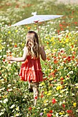 Caucasian ethnicity, child, childhood, Female, field, flower, girl, kid, spring, young, youth, F57-1148256, AGEFOTOSTOCK