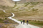 Cycle touring party rides through Molesworth Station, near Acheron River, Isolation Valley, North Canterbury, New Zealand