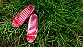 Ballet, Female, Grass, Green, Red, Shoes, Stripes, Ties, L40-1075349, agefotostock