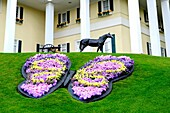 Butterfly Floral Display in front of Dixie Stampede Show at Branson Missouri