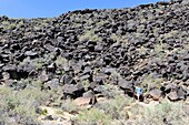 Visitors walking trails at Petroglyph National Monument Albuquerque New Mexico