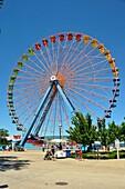 Giant Wheel Ride Cedar Point Amusement Park Sandusky Ohio