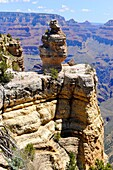 Hoodoos along South Rim Grand Canyon National Park Arizona