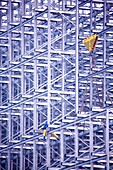 Adult, Adults, Color, Color image, Colour, Construction, Daytime, Exterior, Full-body, Full-length, Hazardous, Height, Horizontal, Human, Outdoor, Outdoors, Outside, People, Person, Persons, Risky, Scaffold, Scaffolding, Structure, Structures, Tall, Work,