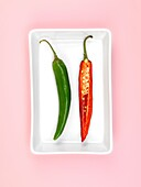 Chilli Peppers isolated on a pink background