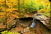 Autumn, Cave, Fall color, Flow, Leaf, Leaves, Midwest us, River, Stream, Tree, United states of america, Water, Waterfall* ohio, S19-1065163, agefotostock