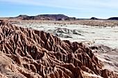 Arid, Arizona, Badlands, Desert, Dry, Petrified forest national park, Rock, Southwest, United states of america, Weather, Winter, Wood, S19-1107248, agefotostock