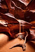 Antelope canyon, Arizona, Curves, Delicate, Desert, Landscape, Nature, Navajo land, Page, Rock, Sand fall, Sandstone, Scenic, Southwest, United states of america, S19-1107328, agefotostock