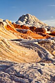 Arizona, Cottonwood cove, Delicate, Desert, Fin, Landscape, Nature, Page, Pattern, Rock, Sandstone, Scenic, South coyote buttes, Southwest, Swirls, United states of america, White pockets, S19-1107369, agefotostock