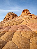 Arizona, Cottonwood cove, Delicate, Desert, Fin, Landscape, Nature, Page, Rock, Sandstone, Scenic, South coyote buttes, Southwest, United states of america, S19-1107390, agefotostock