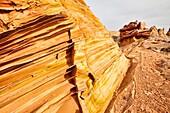 Arizona, Cottonwood cove, Delicate, Desert, Fin, Landscape, Nature, Page, Rock, Sandstone, Scenic, South coyote buttes, Southwest, United states of america, S19-1107393, agefotostock