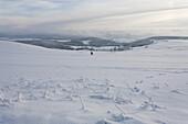 langlauf, ski, ski touring, cross country skying, landscape, scenery, snow, snowy, snow-covered, snow, winter, winter sports, near Gersfeld, Wasserkuppe, low mountain range, Rhoen, Hesse, Germany