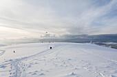 promenader, tourist, landscape, scenery, snow, snowy, snow-covered, snow, to leave one's mark in the snow, winter, near Gersfeld, Wasserkuppe, low mountain range, Rhoen, Hesse, Germany