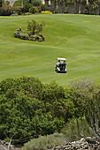 Golfwagen auf dem Grün, Aymerich Golf, San Blas, Teneriffa, Kanaren, Spanien