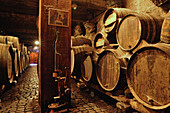 Ruta del Vino, Bodega Monje, El Sauzal,  wooden barrels in wine cellar, Tenerife, Canary Islands, Spain