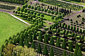 Aerial shot of a nursery garden with geometrically pruned trees, Leer, Lower Saxony, Germany