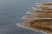 Aerial of Lake Steinhude, frozen water surface in winter, reeds, Hannover region, Lower Saxony, Germany