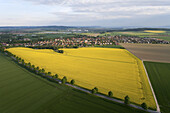 Aerial view of yellow flowering rapeseed crops near Verden, Lower Saxony, Germany