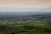 View from the vineyards to Burkheim with the Rhine river plains and the Vosges mountain range in the background, Kaiserstuhl, Breisgau, Black Forest, Baden-Württemberg, Germany
